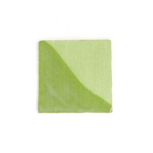 51005 Lertøjsbegitning grøn